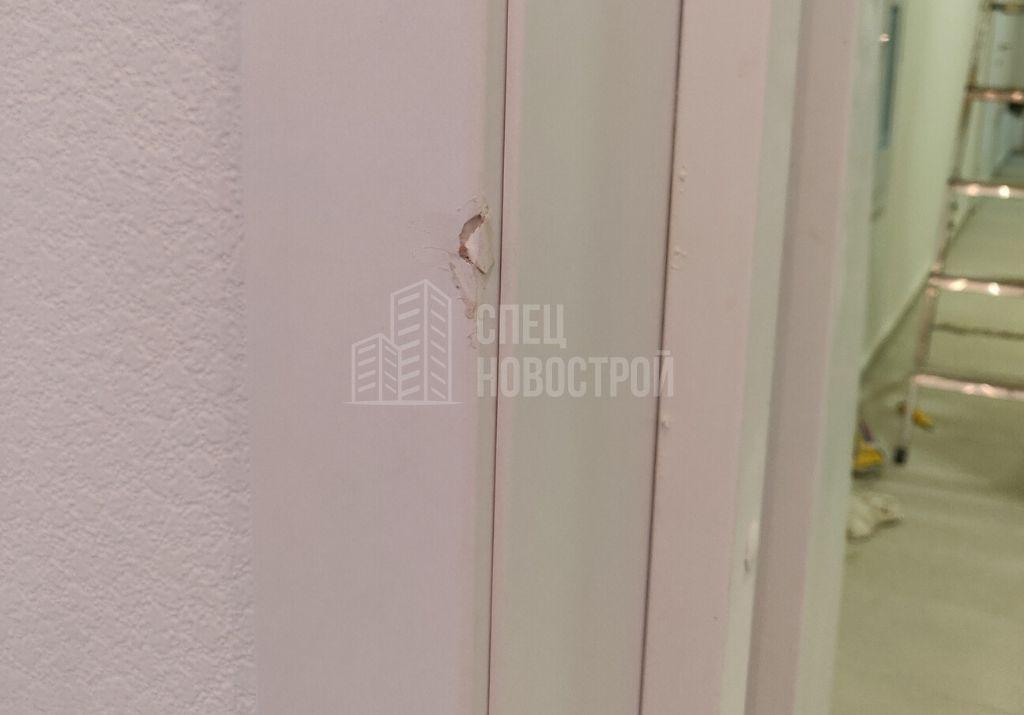 сколы на наличнике входной двери