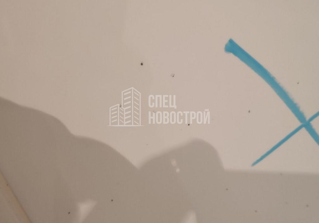 окалины на настенной плитке