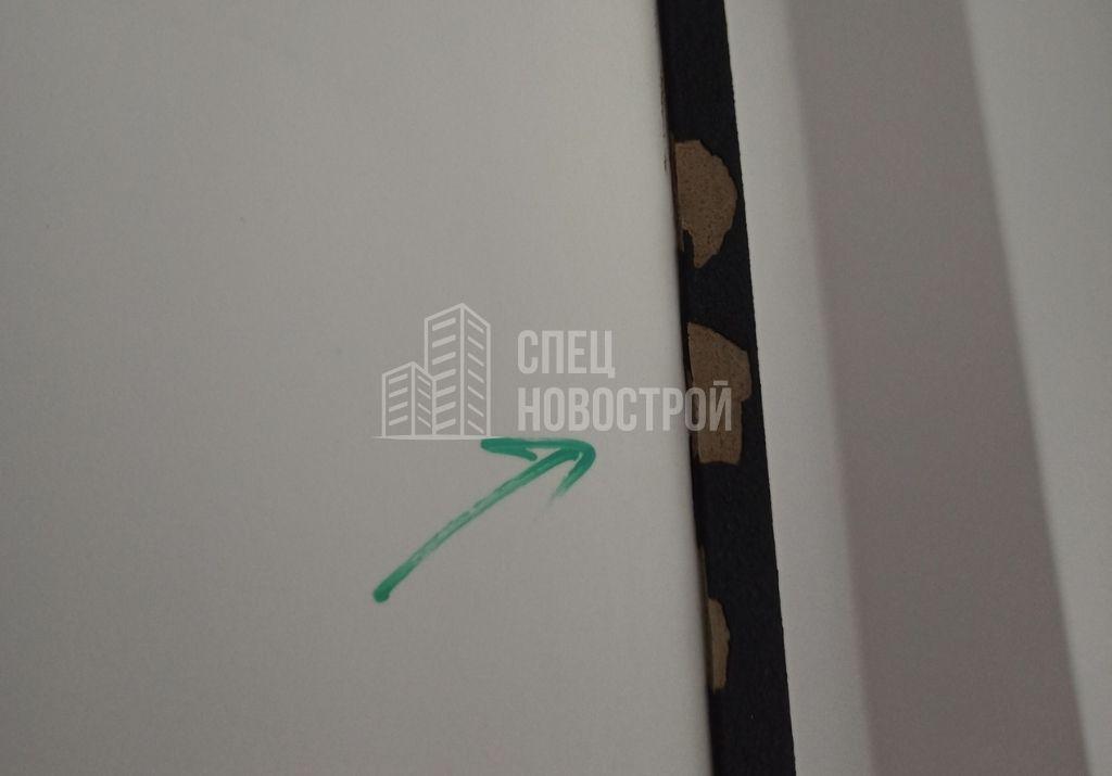 сколы ЛКП на дверном полотне