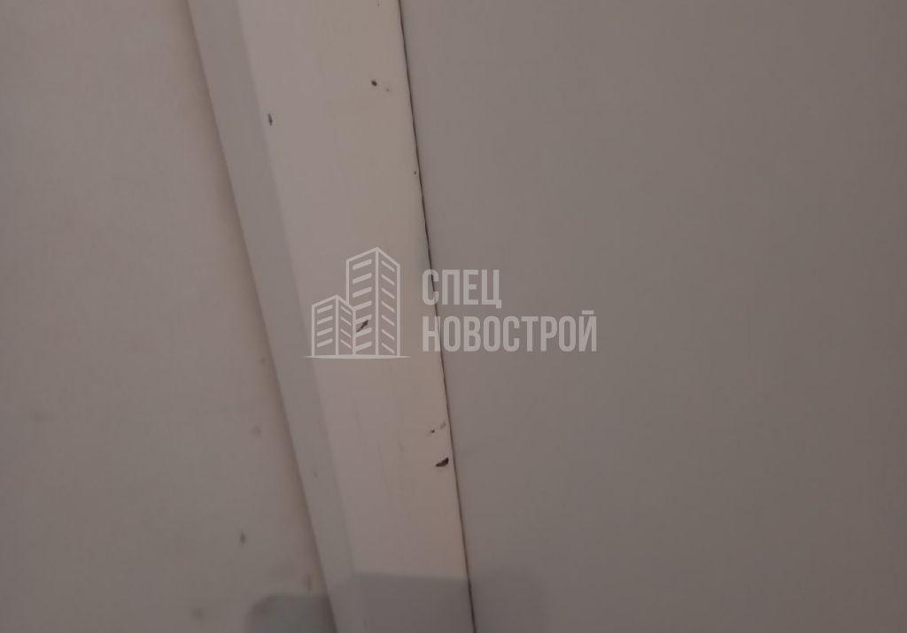 сколы ЛКП на коробке входной двери